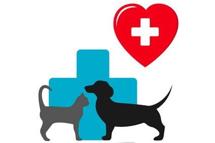 produits-veterinaires-pharmacie-pont-michelet-cambrai